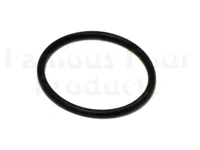 Picture of FF000278 - Thermostat Rubber O Ring