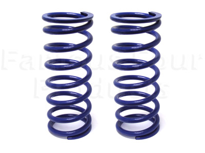 Heavy Duty Rear Coil Springs
