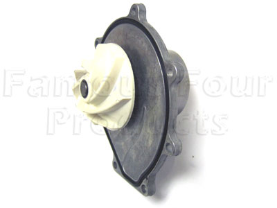 Water Pump Assy. With Gasket