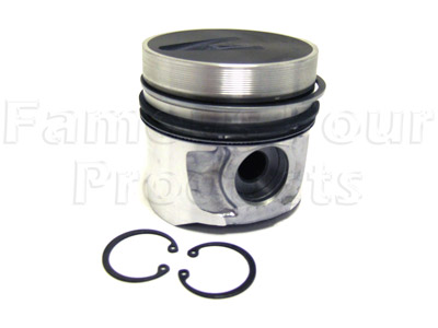 Picture of FF004754 - Piston & Ring Assy.