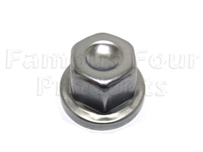 Picture of FF004891 - Replacement Cap for locking wheel nut
