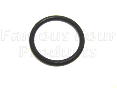 Picture of FF005222 - O Ring for Heater Pipe