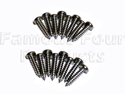 Stainless Steel Light Screw Set -  -