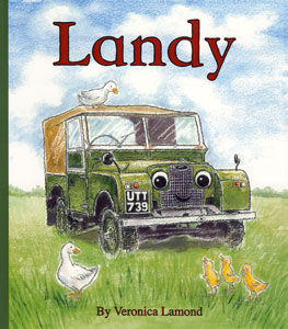Landy - Childrens Story Book