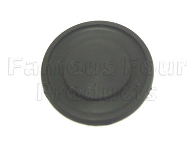 Seal - Fuel Cap