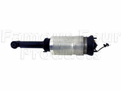 Picture of FF007967 - Damper and Air Spring Assembly - Front