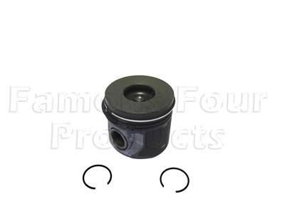 Picture of FF009147 - Piston and Rings