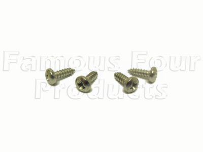 Picture of FF009341 - Stainless Steel Screw Kit - for Headlamp Surround Trim Panel