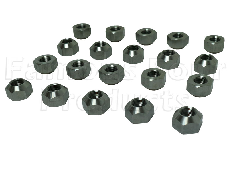 Stainless Steel Wheel Nuts for Steel Wheels - Set of 20 -  -